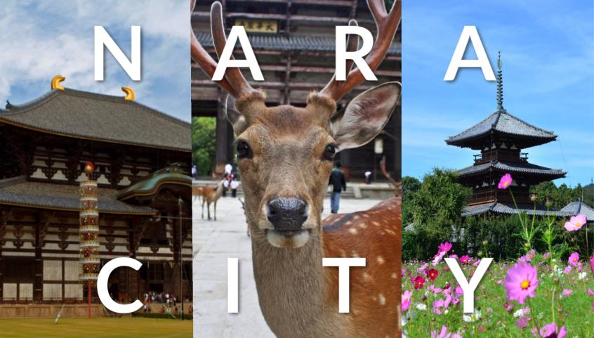 Nara City Japan