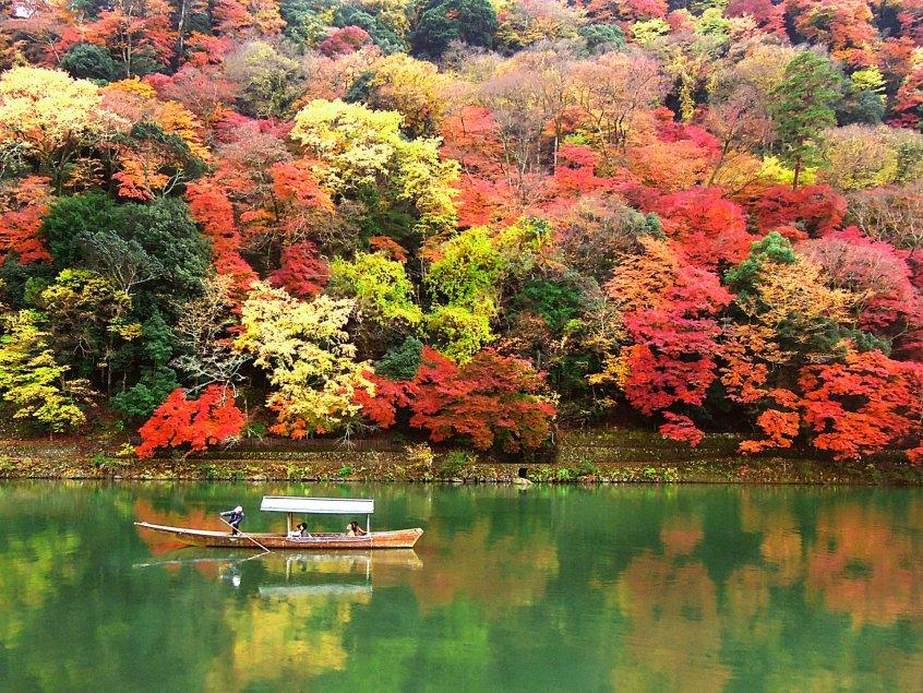 momijigari boat Kyoto river