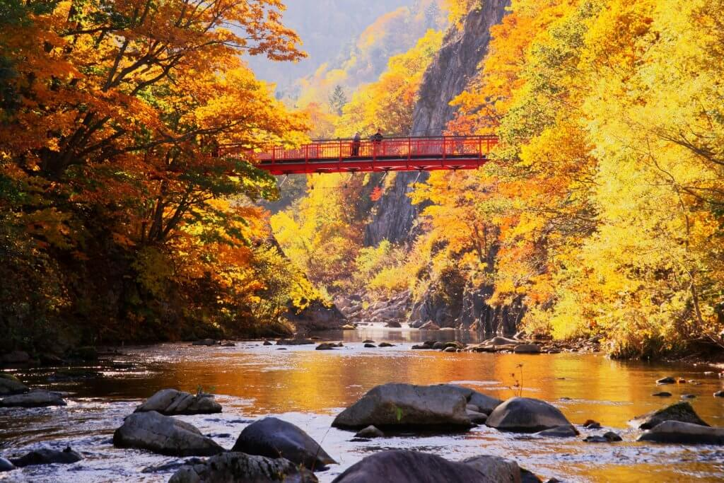 nikko bridge autumn