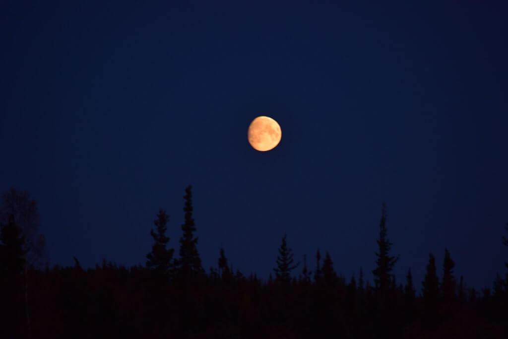 taukimi fall harvest moon