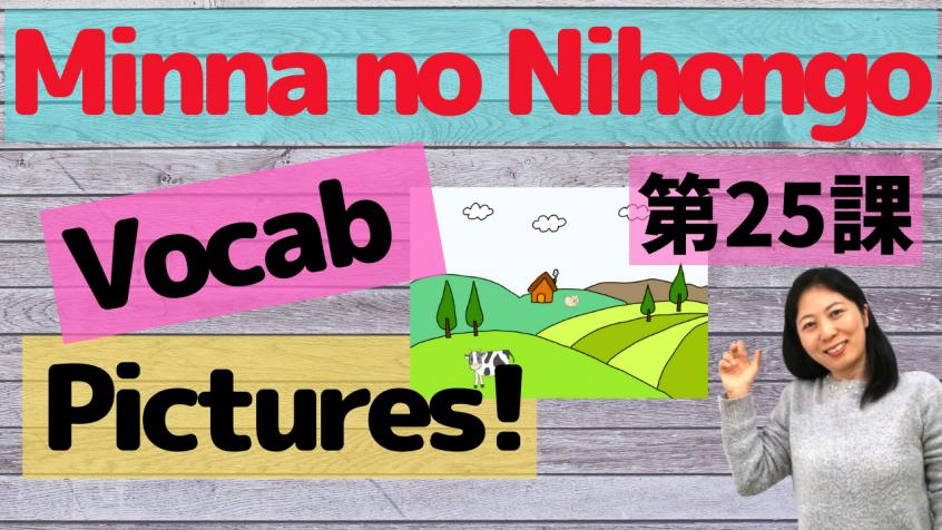 Minna no Nihongo Lesson 25