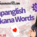 Japanglish Katakana Words